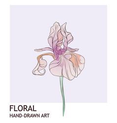 iris floral creative hand drawn watercolor vector image