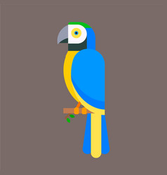 Parrot bird blue breed species animal nature vector