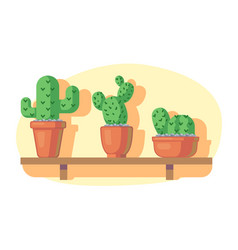 cacti on wooden shelf vector image