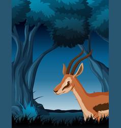 a gazelle in dark forest vector image
