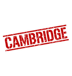 Cambridge red square stamp vector