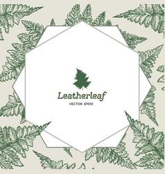 frame of leatherleaf fern botanical vector image