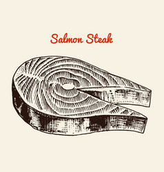 Fresh salmon steak river and lake or sea creature vector