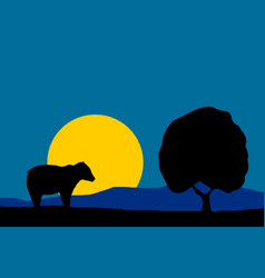 nature - night moon bear vector image