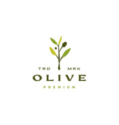 olive branch leaf logo icon vector image