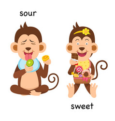 Opposite sour and sweet vector