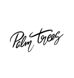 palm trees hand drawn lettering isolated vector image