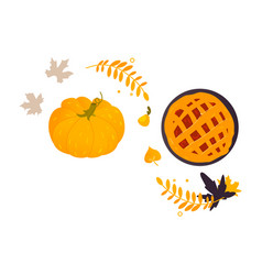 Pumpkin thanksgiving pie and fall autumn leaves vector