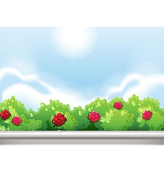 Roses at the park vector