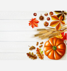Thanksgiving day stylish composition vector