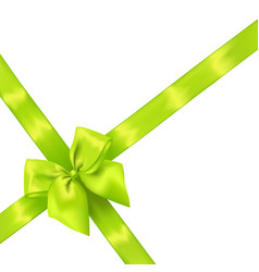 light green realistic bow with ribbons vector image vector image