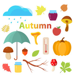 set of autumn objects for design vector image