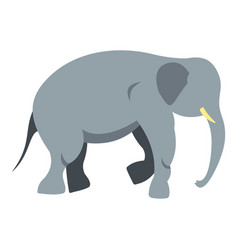 Elephant icon isolated vector