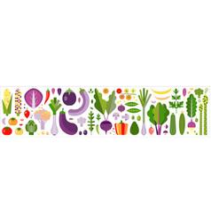 fresh farm organic vegetables banner vector image