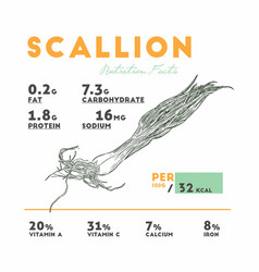 Nutrition facts of raw scallion vector