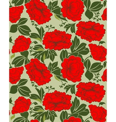 Red peonies vector