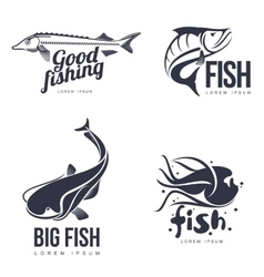 set logo sea fish vector image