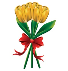 Tulip bouquet with red bow3 vector image