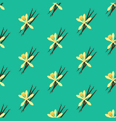 Vanilla flower seamless pattern vector