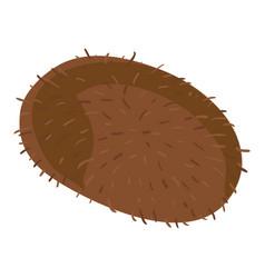 whole kiwi icon cartoon style vector image