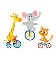cute elephant giraffe cat animal characters vector image