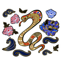 set of elements snake and peony patch vector image