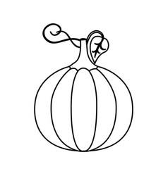 silhouette pumpkin vegetable halloween icon vector image