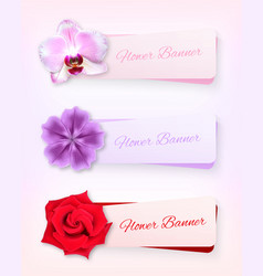 flower banner set vector image