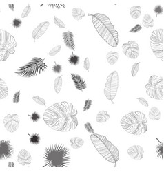 abstract tropical palm leaf background with frame vector image