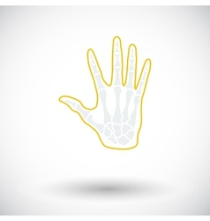 Anatomy hand vector image