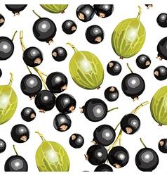 Blackcurrant guseberry vector