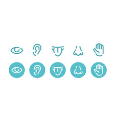 Five basic human senses - - set vector