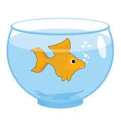 goldfish in aquarium isolated magic marine animals vector image