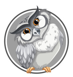 Owl in circle banner vector
