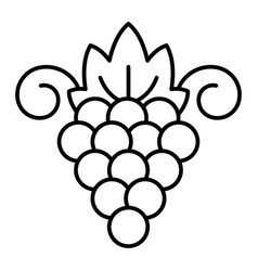 Sauvignon grape icon outline style vector