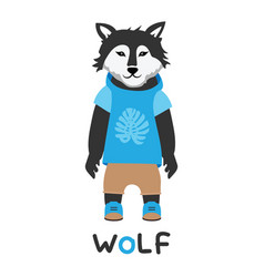 young wolf in a jacket with a hood art vector image