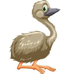 emu vector image vector image