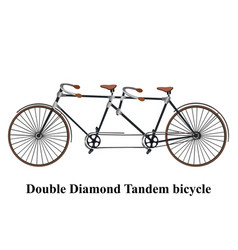 vintage tandem bicycle isolated on white vector image