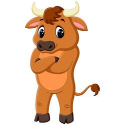 Cute baby bull cartoon vector