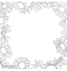 frame with drawing daisy flowers vector image