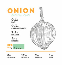 nutrition facts of raw onion vector image