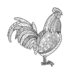 Rooster coloring book for adults vector