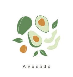 Stylish avocado design contemporary art print vector