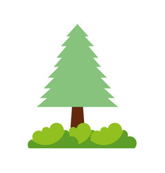 tree forest foliage wooden trunk natural vector image