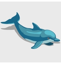 Cartoon Dolphin character for your design needs vector image