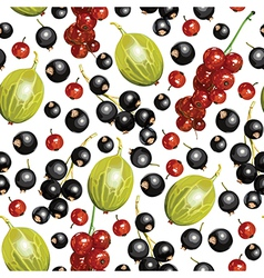Currant berry pattern vector