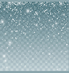 snowfall pattern falling snowflakes isolated on vector image