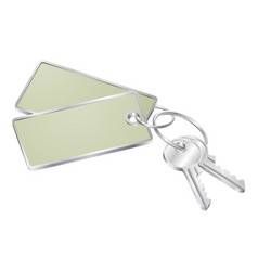 Two keys with blank tag for text vector
