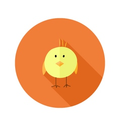Yellow Chicken Flat Icon over Orange vector