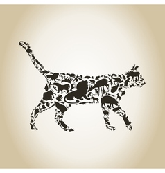 Cat an animal vector image vector image